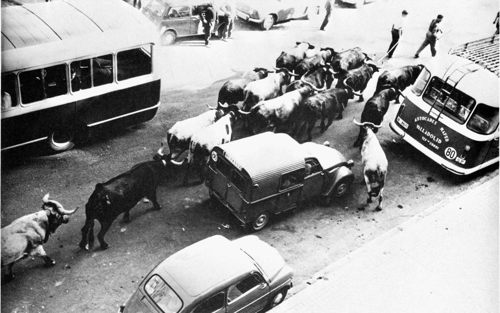 Traslado de los cabestros en 1965 (Zubieta y Retegui)