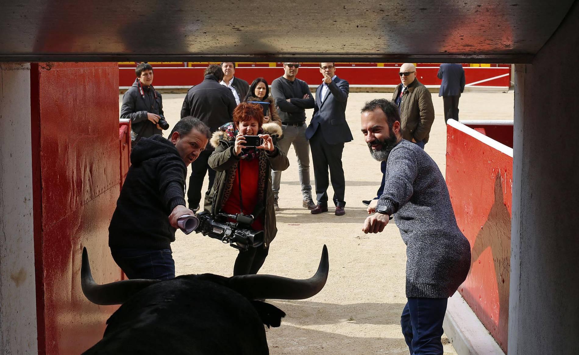 La Plaza de Toros de Pamplona reabre sus visitas guiadas en Semana Santa