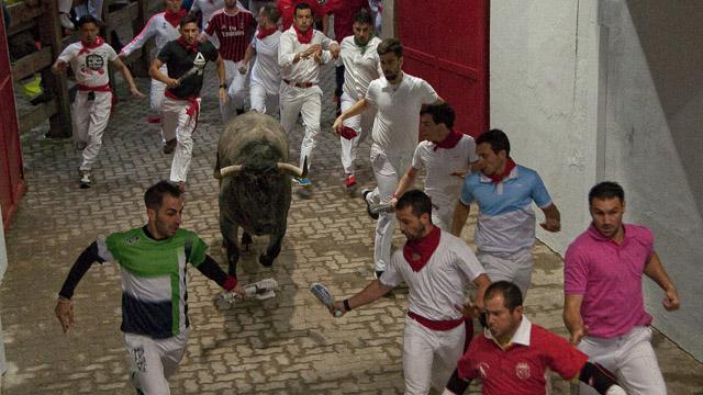 Toro de José Escolar entrando en la Plaza de Toros
