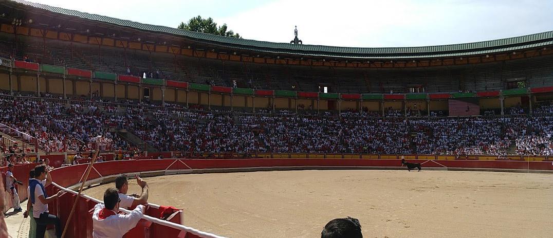 Perspectiva plaza de toros de Pamplona
