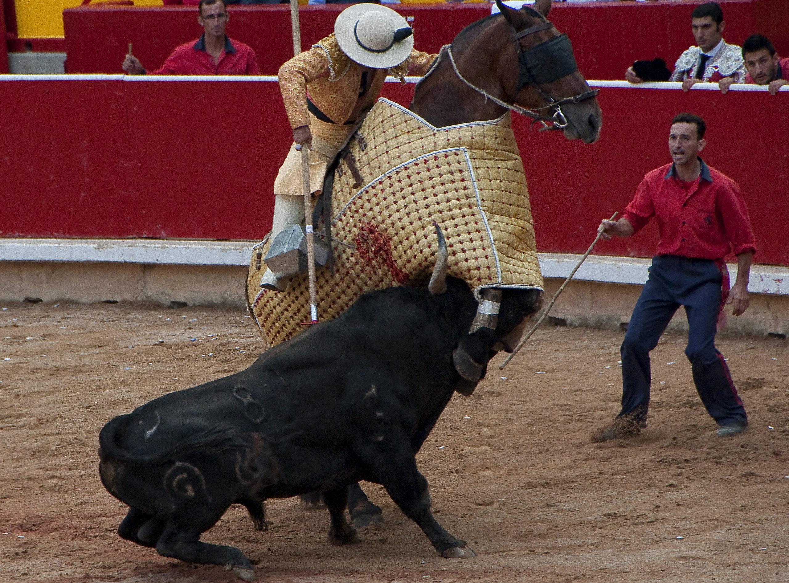 Toro de Fuente Ymbro: Antonio urtasun